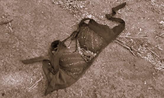 murthal-rape-6-580x395